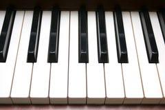 Piano keyboard. In closeup royalty free stock image