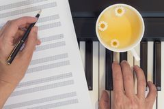 Piano Keyboard, Hands, and Cup of Chamomile Tea. Close Up, Top View, Lifestyle, Concept, Romance royalty free stock image