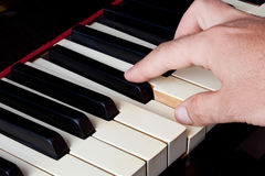 Piano keyboard made of ivory with hands Stock Photos