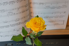 Piano keyboard with music book and yellow rose Stock Images