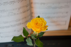 Piano keyboard with music book and yellow rose Royalty Free Stock Photography