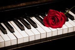 Piano keyboard and rose. Retro piano keyboard and red rose closeup royalty free stock images