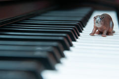 Piano keyboard and toy Stock Photo