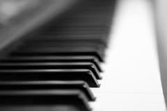 Piano Keys. Black and White Stock Image