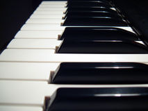 Free Piano Keys Royalty Free Stock Photo - 1555055