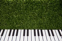 Piano keys against a green grassy wall.  royalty free stock images