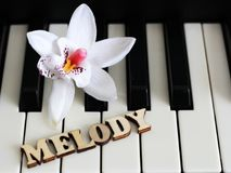 Piano keys closeup with the letters melody. Object Royalty Free Stock Image
