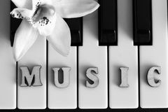 Piano keys closeup with the letters music. Object Royalty Free Stock Image