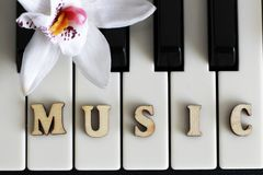 Piano keys closeup with the letters music. Object Stock Photos