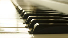 Piano keys. Electronic keys closeup royalty free stock photo