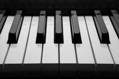 Piano keys macro. Black and white keys of the piano closeup Stock Photos