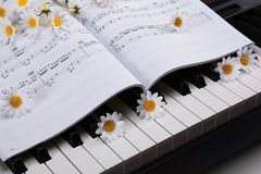 Piano keys and musical book and flower. Black and white keys of the piano closeup and musical book Stock Photo