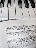 Piano keys with notes, musical background. Stock Photos