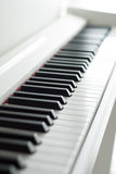 Piano keys. Piano playing. Black and white keys. Electronic piano Stock Image
