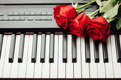 Piano keys and red roses. Closeup view Royalty Free Stock Photography