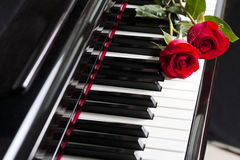 Piano keys and roses Royalty Free Stock Image