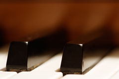 Piano Keys - shallow focus. Macro of piano keys, shallow focus for effect stock photo