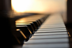 Piano keys. White piano keys in the sunlight royalty free stock image