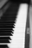 Piano keys and wood grain Royalty Free Stock Images