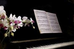 Piano met bloem Royalty-vrije Stock Foto's