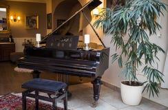 Piano på en stång Royaltyfria Foton