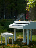 Piano in the park Royalty Free Stock Photos