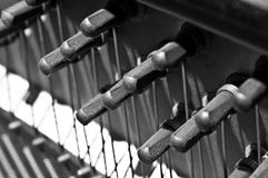 Piano Pegs In Rows. With strings tightened on them Royalty Free Stock Photography