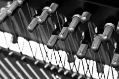 Piano Pegs With Strings. Under tension Royalty Free Stock Photography