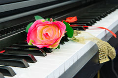 Piano & rose. Piano keys and red rose beautiful Stock Images
