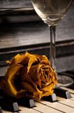 Piano and rose Stock Images
