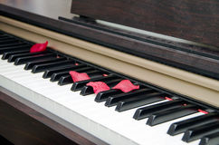 Piano with Rose Petals Stock Image