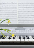 Piano sheet music flowers Royalty Free Stock Images