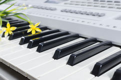 Piano sheet music flowers Stock Images