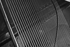 Piano stings. Piano strings on top of a soundboard Stock Photography