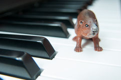 Piano and toy Stock Photos