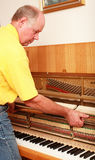 Piano tuner Stock Images