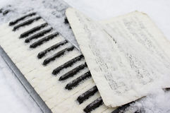 Piano Under Snow Stock Image