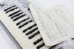 Piano Under Snow Stock Image