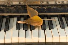 Piano velho, folhas de outono nas chaves, imagem de stock