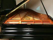 Pianoforte a coda del bambino Fotografie Stock