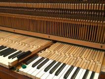 Pianoreparation Fotografering för Bildbyråer