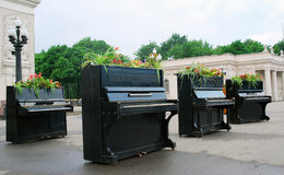 Pianos decorated by flowers Stock Images