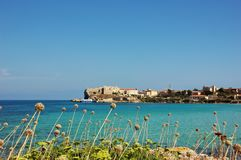 Pianosa island, Italy. View of the sea and the vegetation of Pianosa, in front of Elba island, Italy Stock Photography