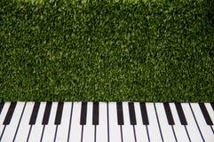Pianosleutels tegen een groene grasrijke muur royalty-vrije stock afbeeldingen