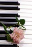pianot steg Fotografering för Bildbyråer