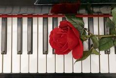 Pianotangentbord och röd ros Royaltyfri Fotografi
