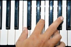 Pianotangenter Arkivbilder