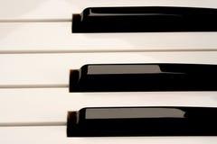 Pianotangenter av en modulsynt Arkivfoton