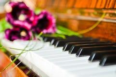 pianotulpan Arkivbilder