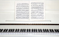 pianowhite Arkivbild
